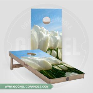 Cornhole Boards - Tulpen
